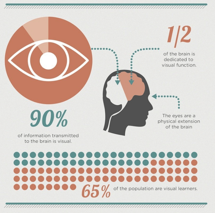 how brain views infographics