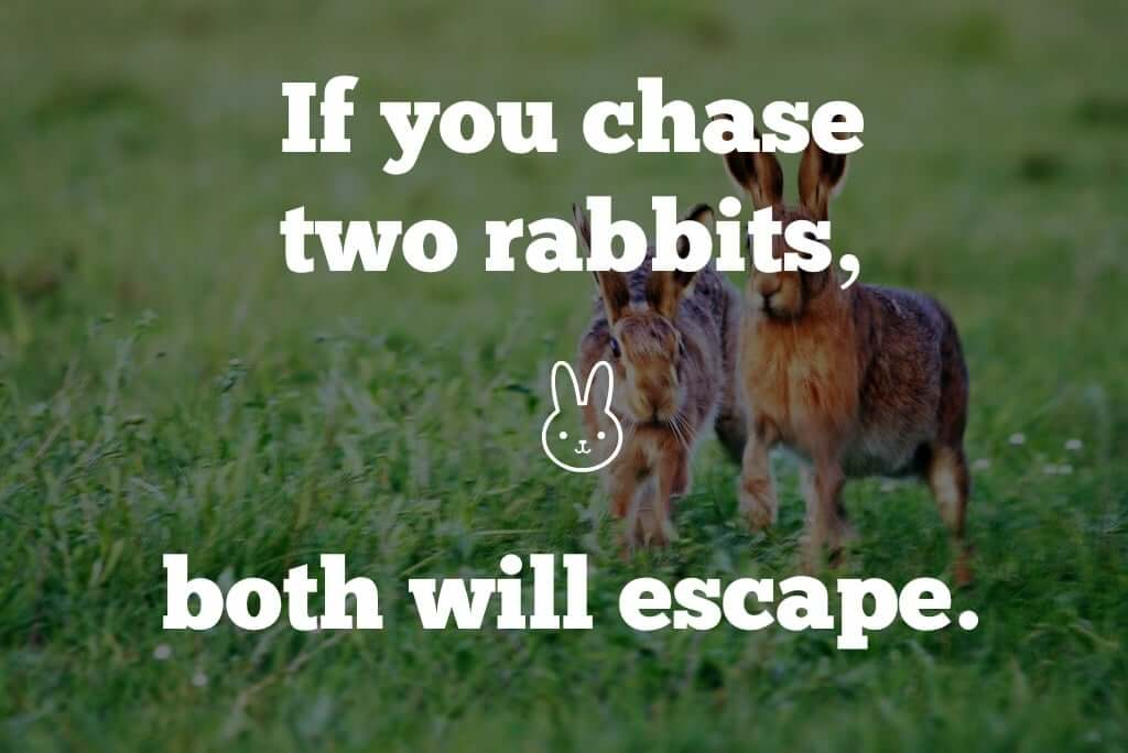 chase-two-rabbits